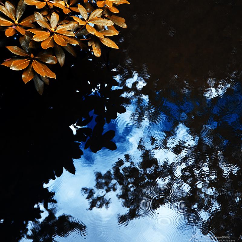 Zamek Moszna, park. Całość prezentuje sie bardzo okazale i, co u nas niekiedy kuleje, bardzo zadbanie. Mimo wczesnej jesieni teren był uprzątnięty i nader ładnie zagospodarowany. Jak przystało na wrzesień, taflę wody zmąciły pierwsze krople deszczu.